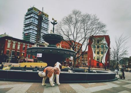 A fountain/dog-shrine in Toronto, ON.